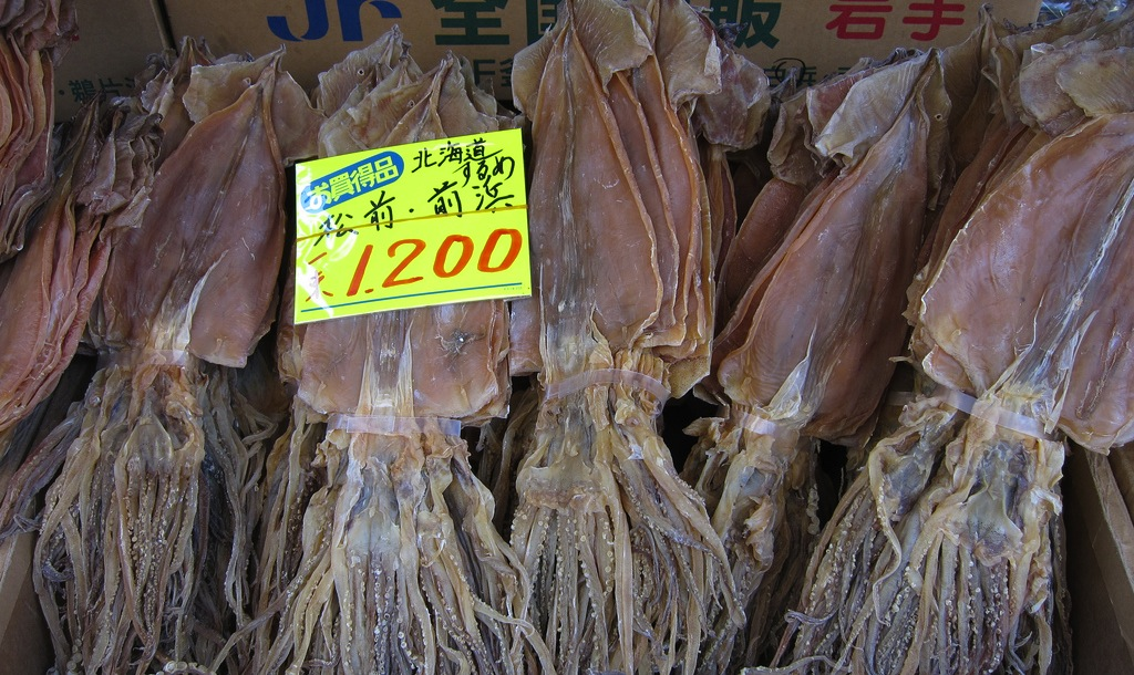 Dried Cuttlefish_hslo