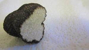 Truffle2_dailylifeofmojo
